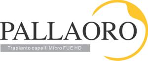 Micro FUE HD Logo
